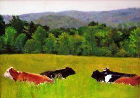 Cummington Cows